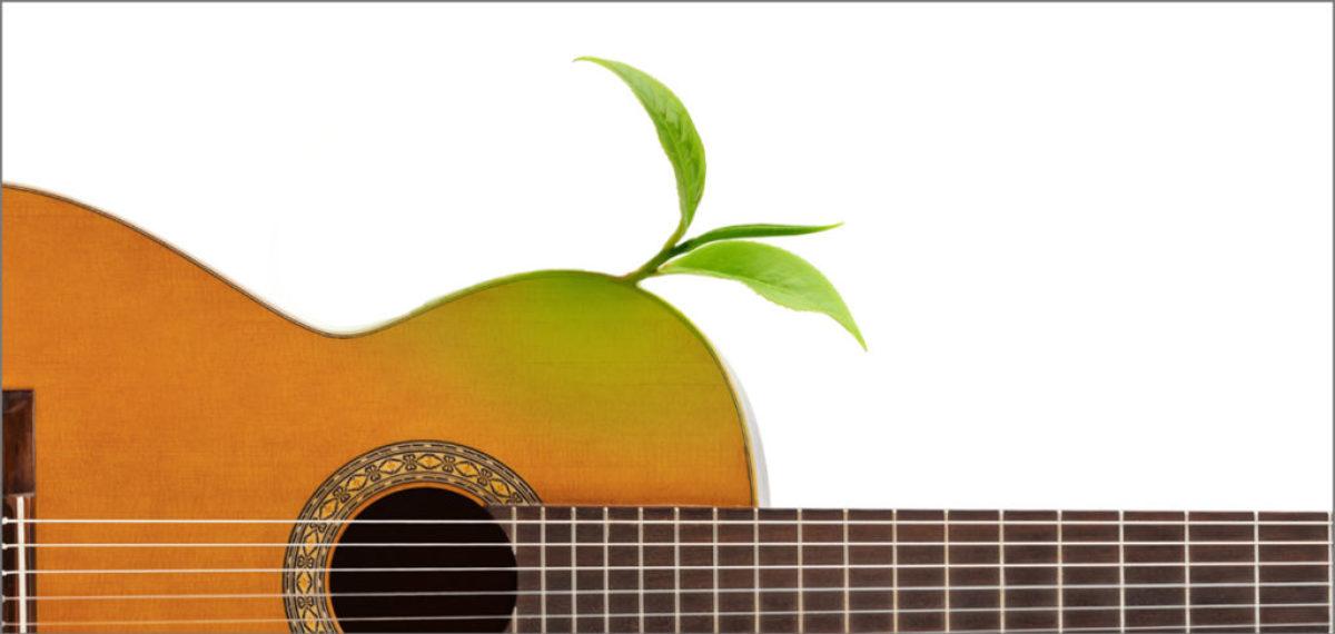 gitara 2