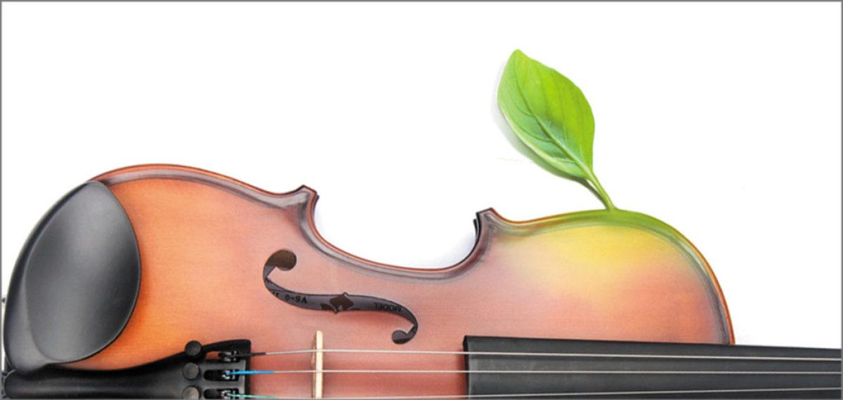 skrzypce 3